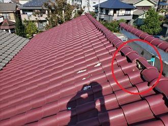 棟瓦がずれて屋根の上に漆喰が落ちていました