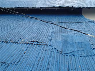塗装後の波板屋根