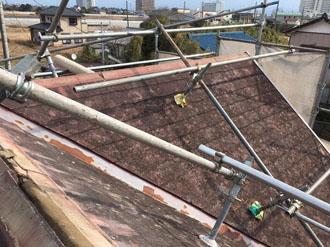 屋根にも足場設置