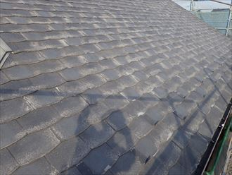 屋根塗装が出来ないパミール