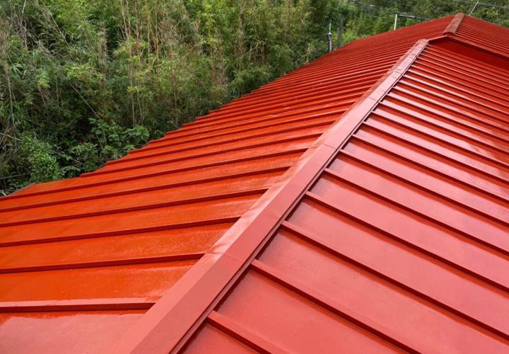 屋根の部分的な葺き替えと塗装が完了