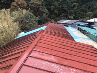 雨漏りが発生したトタン屋根の調査