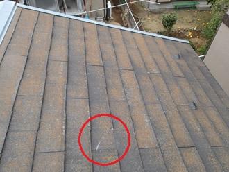 藻や破損が生じたコロニアルの屋根
