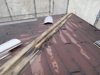 棟板金を撤去すると木材貫板が腐食していました