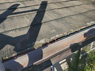 スレート屋根の軒先に苔が発生