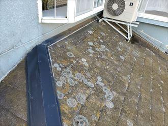 防水性が低下し苔・藻・カビが発生したスレート屋根調査