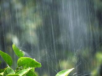 雨漏りは雨天又は翌日に発生する