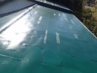 雨漏りが発生したせいか屋根には処置した痕跡がありました