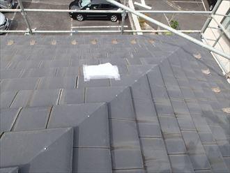 屋根にひび割れがあり保護されている
