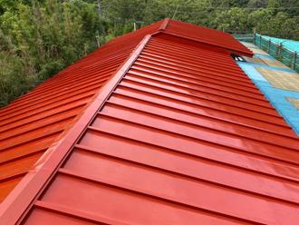 部分葺き替えと塗装を行った瓦棒屋根