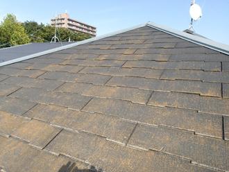 藻が発生した築16年になる邸宅のスレート屋根