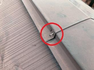 棟板金の釘浮きを確認