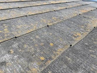 スレート屋根、調査