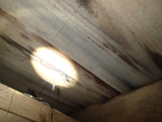 屋根裏の天井に雨染みが出来ています