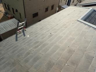 屋根にのぼり調査を開始