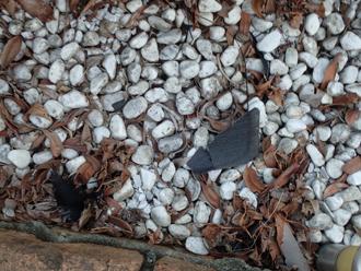 庭先に落下した屋根材の破片