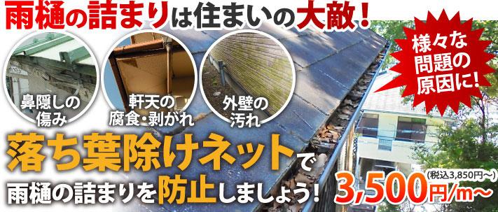 雨樋の詰まりにお悩みの方へ、落ち葉除けネットがお薦めです