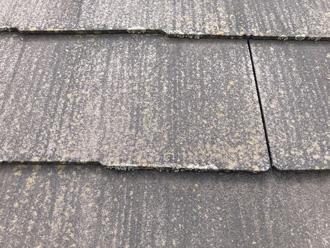 屋根の拡大