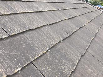 屋根の断面