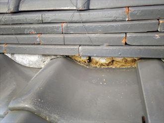 棟の葺き土が露出すると雨漏りや棟の崩れに繋がります