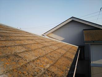 防水性の低下によりスレート屋根に苔・藻・カビが発生