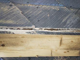 棟板金が飛散し防水紙が露出