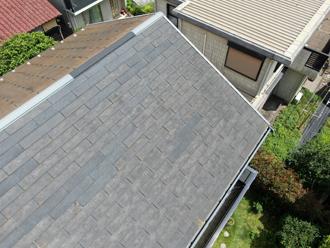 藻が繁殖している屋根面とそうでない面がよくわかります