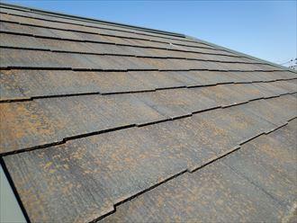 防水性の低下により苔・藻・カビが発生しているスレート屋根