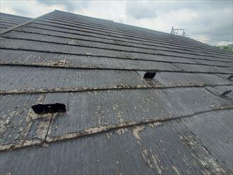 塗膜が剥がれているスレート屋根の調査
