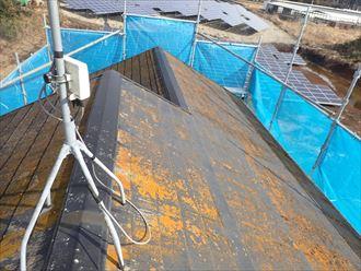 スレートの塗膜が剥がれて防水性が低下し屋根全体に苔・藻・カビが発生
