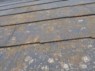 防水性が低下して苔・藻・カビが発生しているスレート屋根