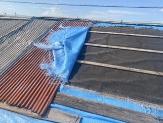 屋根のトタンが大きく剥がれていました
