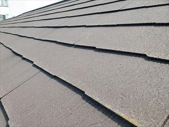 防水性が低下して苔・藻・カビがスレート屋根に発生