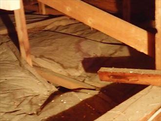小屋裏調査 木更津市 雨漏り