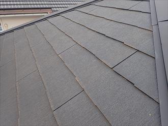 松戸市大橋で行ったコロニアル屋根調査で塗装の劣化により防水性が低下し苔が発生