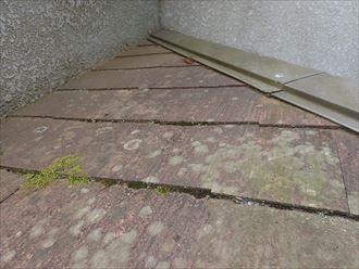 船橋市藤原で行った築30年が経過した化粧スレート屋根調査で防水紙の劣化を早め雨漏りの原因になる苔は早期に除去しなければいけません