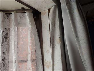 柏市今谷上町で行った雨漏り調査で室内天井と壁に雨染み