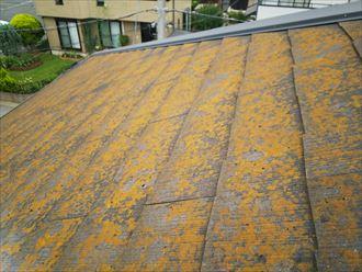 柏市永楽台で行った化粧スレート屋根調査で耐久性の低下に繋がる防水性が低下したスレート