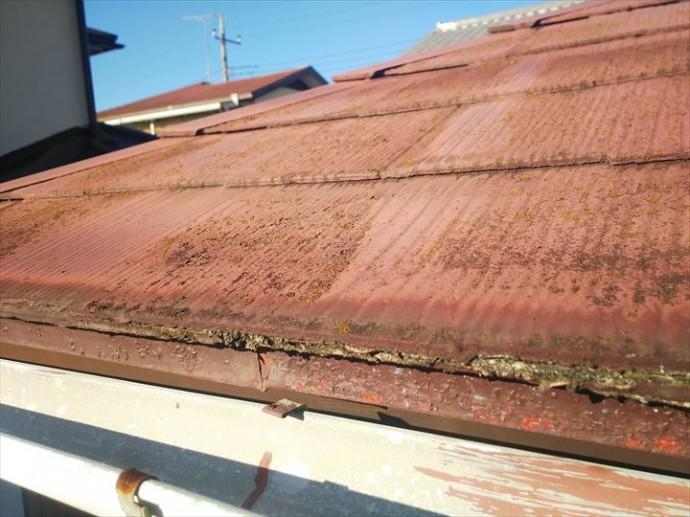 野田市岩名で行った化粧スレート屋根の調査で軒先の化粧スレートの素地が露出し雨水を吸収しやすい状態です