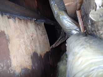 千葉市若葉区 アパート漏水散水検査006_R