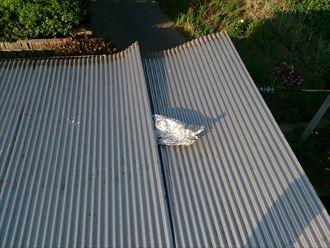 袖ヶ浦市の波板と瓦屋根補修工事
