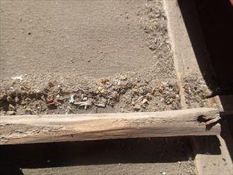 いすみ市 セメント屋根の調査013_R