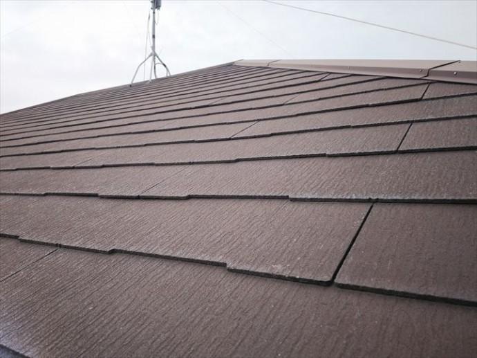 柏市加賀で行ったスレート屋根調査でスレートの反りを発見