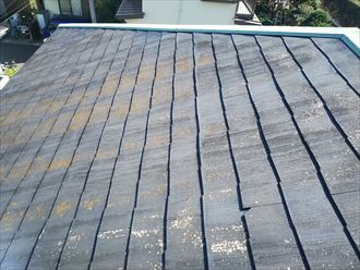 流山市平和台で行った化粧スレート屋根調査で防水性の低下により苔・藻・カビが発生