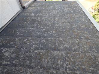 鴨川市 ステンレス製の棟板金001_R