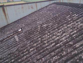 木更津市 会社の屋根補修工事001_R