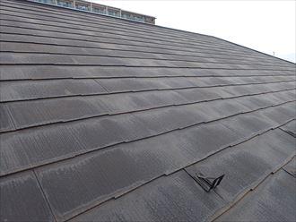 野田市上花輪で行った化粧スレート屋根調査で塗装の経年の劣化により防水性が低下しています