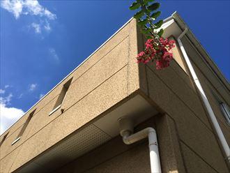 八千代市 築11年の屋根調査003_R