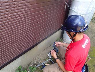 木更津市のアパート塗装後にクロアリの発生で調査依頼