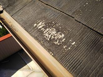 流山市平和台で行った化粧スレート屋根調査で素地の露出を発見